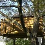 Wie baue ich ein Baumhaus?