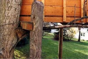 Baumhaus und Mast