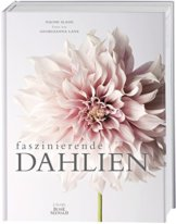 Faszinierende Dahlien - 1