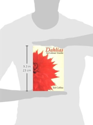 Dahlias: A Colour Guide - 2