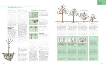 Das große GU Gartenbuch: Das Standardwerk für jeden Gartenliebhaber (GU Gartenspaß) - 5