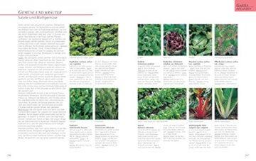 Das große GU Gartenbuch: Das Standardwerk für jeden Gartenliebhaber (GU Gartenspaß) - 8