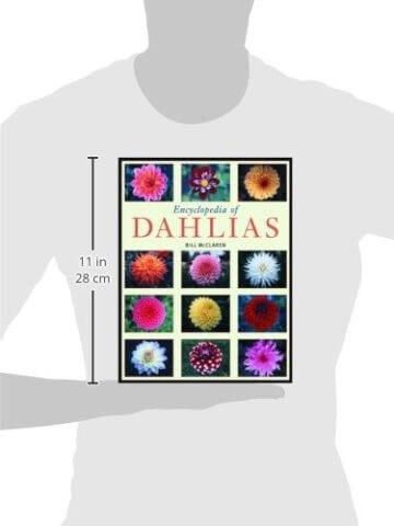 Encyclopedia of Dahlias - 3