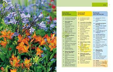 Gartenjahr für Einsteiger: Schritt für Schritt zum grünen Paradies - 2