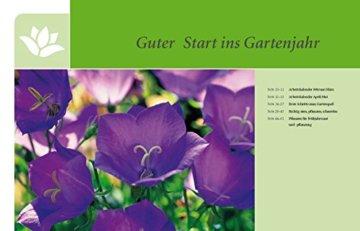 Gartenjahr für Einsteiger: Schritt für Schritt zum grünen Paradies - 3