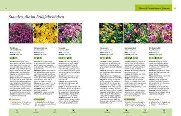 Gartenjahr für Einsteiger: Schritt für Schritt zum grünen Paradies - 6