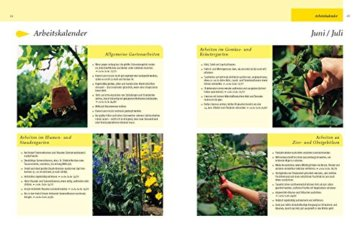 Gartenjahr für Einsteiger: Schritt für Schritt zum grünen Paradies - 7