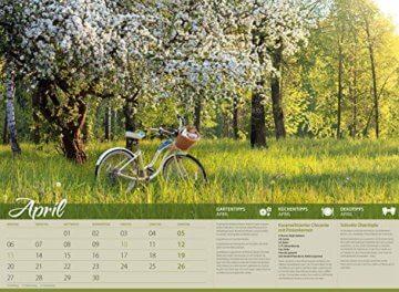 Landliebe 2020, Wandkalender im Querformat (45x33 cm) - Gartenkalender / Landleben mit Tipps zu Garten, Küche und Dekoration mit Monatskalendarium - 5