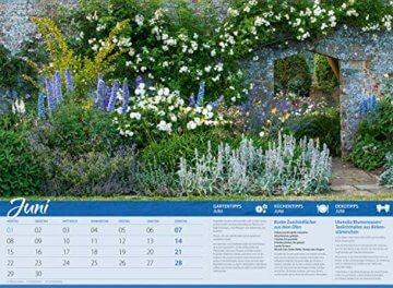 Landliebe 2020, Wandkalender im Querformat (45x33 cm) - Gartenkalender / Landleben mit Tipps zu Garten, Küche und Dekoration mit Monatskalendarium - 7