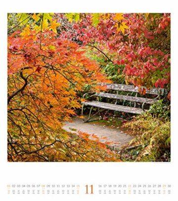 Paradiesische Gärten 2020, Wandkalender im Hochformat (48x54 cm) - Gartenkalender mit Monatskalendarium - 12