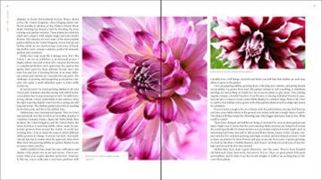 Plant Lovers  Guide to Dahlias (Plant Lover S Guides) - 3