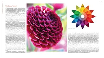 Plant Lovers  Guide to Dahlias (Plant Lover S Guides) - 5