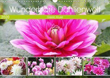 Wunderbare Dahlienwelt (Wandkalender 2020 DIN A3 quer): Die Königin des Spätsommers in farbenfroh leuchtenden Fotografien (Monatskalender, 14 Seiten ) (CALVENDO Natur) - 1
