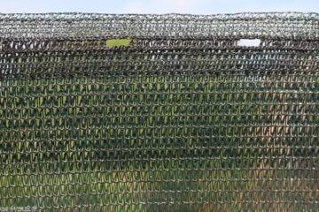 HaGa® Schattiernetz (Meterware)- Netz in 1m Breite mit 60% Schattierwirkung - Sonnenschutzgewebe Sichtschutz für Zaun - Abdunkelung für Gewächshaus und Gemüsegarten - 3