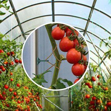 HOMEGARD® - Gewächshausclips im 60er & 30er Set - Extra verstärkte Pflanzenhalter für Ihr Gewächshaus - Das perfekte Gewächshaus Zubehör - Die optimale Rankhilfe für Ihre Pflanzen - 5